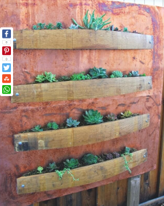 Recycled Wine Barrels Planter_3