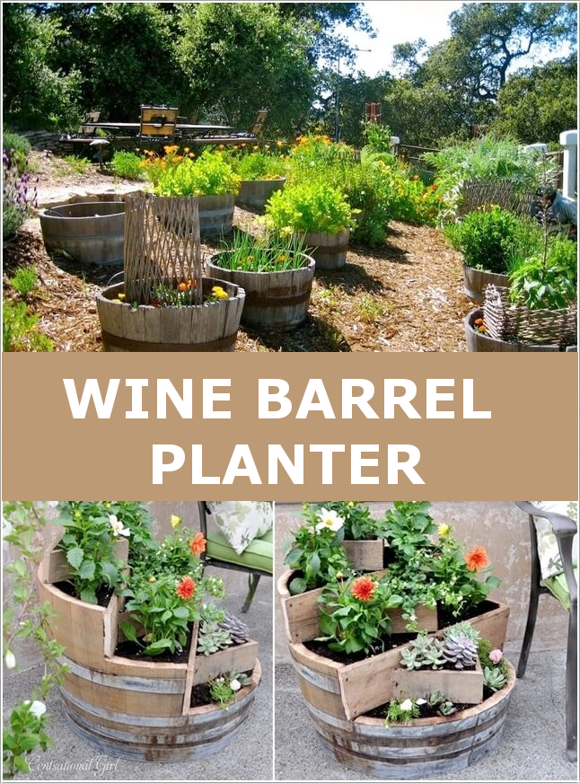 wine_barrel_planters