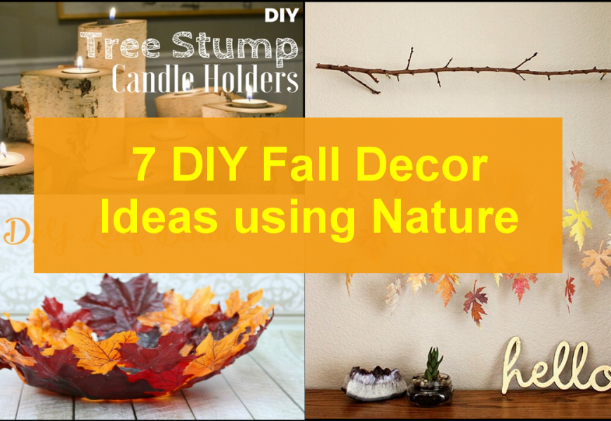 7 DIY Fall Decor Ideas using Nature