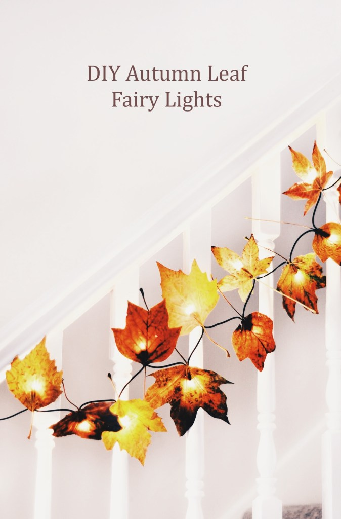 Autumn leaves with fairy lights