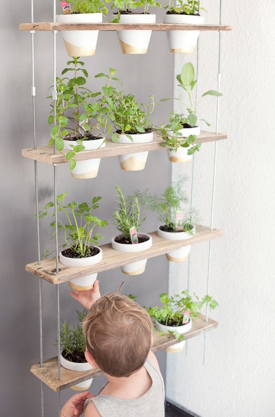 vertical-garden-herb