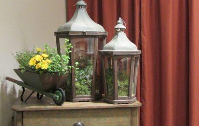 Winter gardening that you can do indoors – Santa Clarita Valley Signal