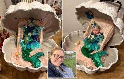 Thrifty mum makes incredible 'clam pram' for £25 using budget buys from Facebook Marketplace and Wilko spray paint